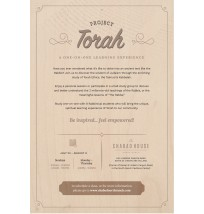 Torah Flyer