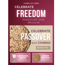 Pesach Minisite Email