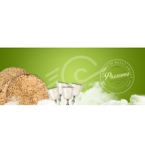 Pesach Web Banner (template6)