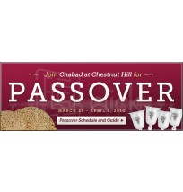 Pesach Web Banner 6