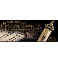 Mezuzah Campaign Web Banner